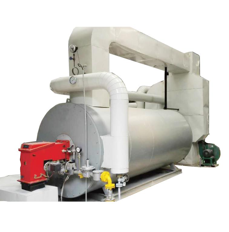 燃气油导热油炉